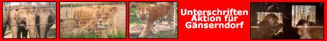 Unterschriftenaktion von for-animals