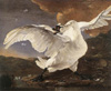 Bild: ASSELYN, Jan. The Threatened Swan. before 1652. Oil on canvas, 144 x 171 cm. Rijksmuseum, Amsterdam.
